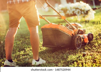 Sunset details of industrial gardening and landscaping. Caucasian Gardener working with lawnmower and cutting grass during summer season