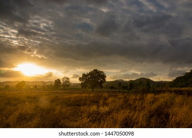 Sunset at Dusk over grassland valley with Dramatic Raining Cloud Sky and Mountain with sunshine over tree as Background