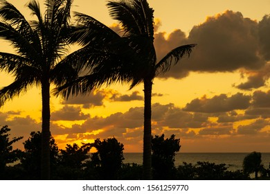 Sunset of Emerald beach, Ocean Expo Park, Okinawa.