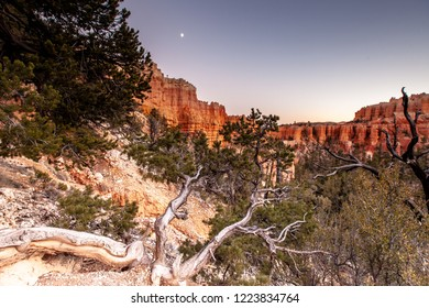 Sunset at Fairyland Canyon at Bryce Canyon National Park