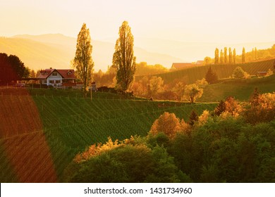 Sunset at Famous Slovenian and Austrian heart shape wine road in vineyards of Slovenia. Scenic landscape and nature near Maribor in Slovenija. Unique tourism on green hills.