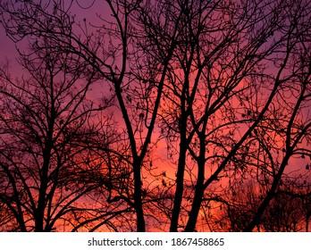 sunset fire on December sky