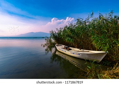 Sunset, a fishing boat in a reeds.