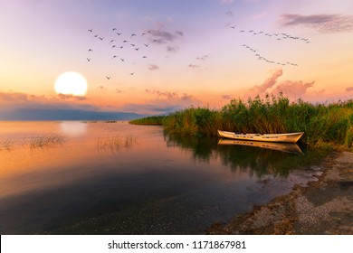 Sunset, a fishing boat in a reeds.Flying birds.