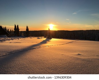sunset, flashy snow, snowy nature
