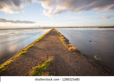 Sunset in Flooded rice paddy Sueca Valencia province Spain