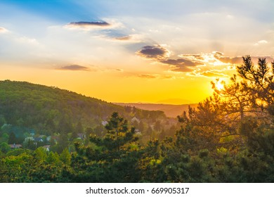 Sunset, Sunset in a forest on a hillside