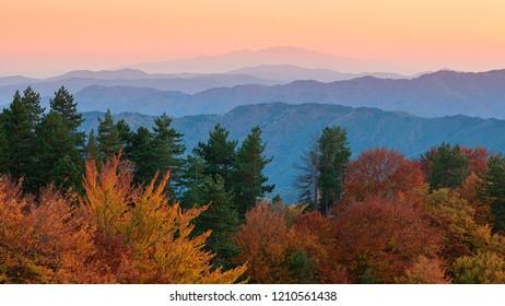Sunset at Frakto wood - Greece National park - Rhodope