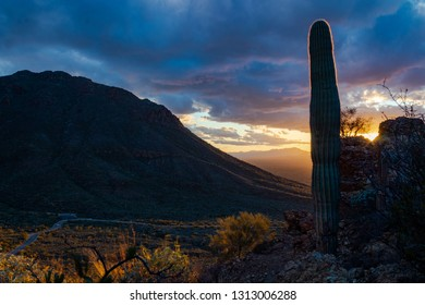 Sunset at Gates Pass in Saguaro National Park west of Tucson, Arizona. Sonoran Desert landscape with cactus, rocky cliffs, panoramic views and beautiful colorful clouds.