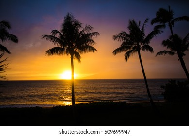 A sunset glowing orange and purple with the silhouette of Palm Trees in Maui, Hawaii