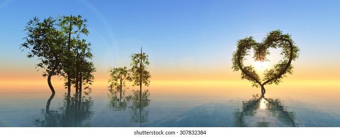 sunset and heart bambu plant