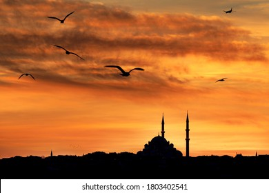 Sunset in Istanbul, Turkey. Istanbul, formerly known as Byzantium and Constantinople, is the most populous city in Turkey and the country's economic, cultural and historic center.