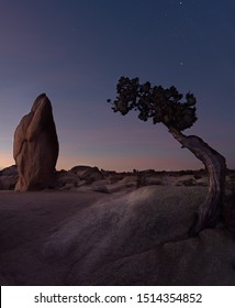 Sunset at Joshua Tree National Park. This section of the park is called Penguin Rock