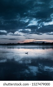 Sunset in Kazimierz Dolny, Poland. View of the duck floating on the Vistula River.