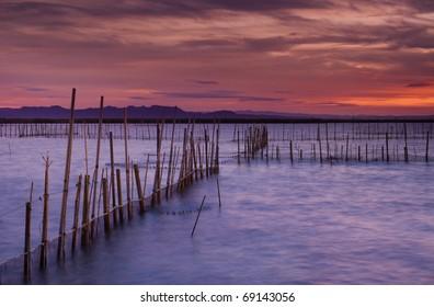 Sunset in La ALbufera (Valencia,Spain)