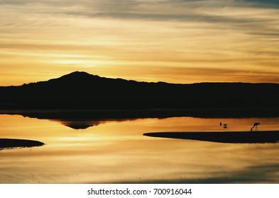 Sunset at lake in Atacama Desert