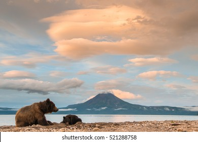 Sunset at Lake Kuril. Bears are having a rest