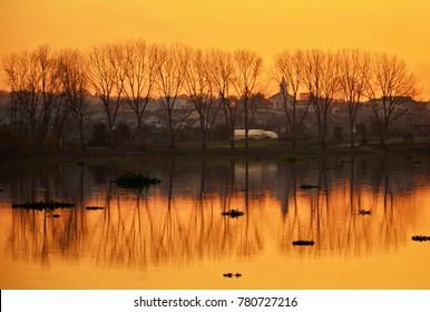 Sunset in the lake Pateira de Fermentelos, Portugal
