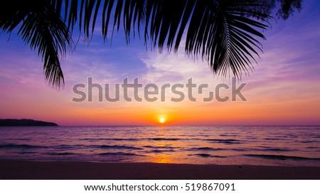 sunset landscape beach sunset palm trees の写真素材 今すぐ編集