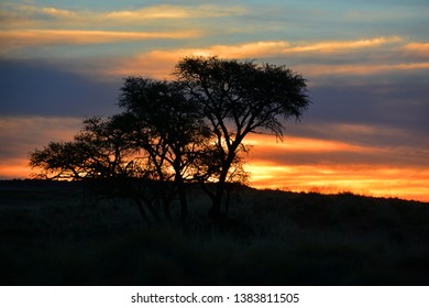 Sunset landscape of the Namib-Naukluft National Park is a national park of Namibia encompassing part of the Namib Desert (considered the world's oldest desert) and the Naukluft mountain range.