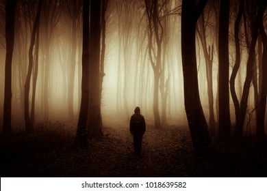 sunset light in dark mysterious forest with scary man silhouette