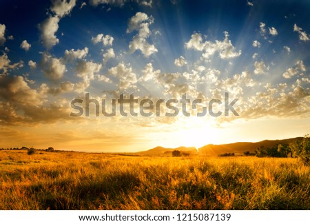 sunset-light-rays-filling-sky-450w-12150