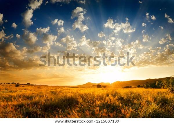 sunset-light-rays-filling-sky-600w-12150