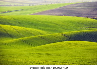 Sunset lines and waves in the spring, South Moravia, Czech Republic