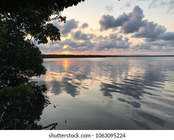 Sunset in the mangrove trees by the Mida creek in Watamu, Kenya. Sun and clouds reflecting in the water. Amazing colors.