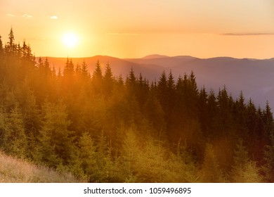 Sunset in the mountains with forest and big shining sun on dramatic sky