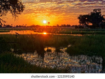 Sunset in the Okavango Delta, Botswana, Africa