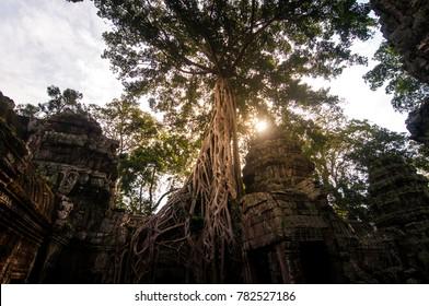 Sunset on Angkor Thom, Combodia