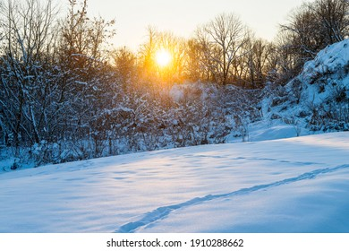 Sunset on the background of the winter forest