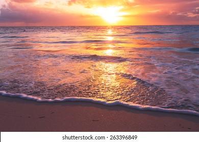 beach sunset images stock photos vectors shutterstock