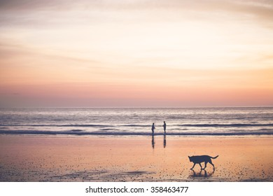 Sunset on the beach - Bright orange sunset, sand reflecting the colors, two people and a dog enjoying the scene.