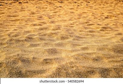 Sunset on the beach. Golden sand texture.