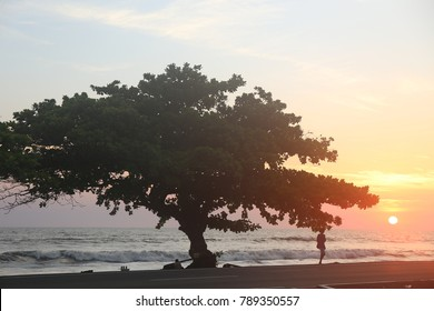 Sunset on a beach with silhouettes of tree, automobile and persons. Calm water and sweet colors compose a nice picture. The picture has been taken in Libreville Gabon on may 2017 at the end of the day