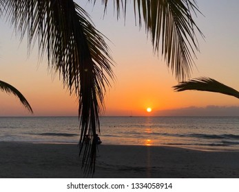 Sunset on the beach through palm leaves