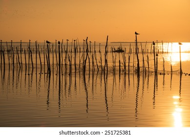 Sunset on the calm waters of Albufera lagoon, Valencia, Spain