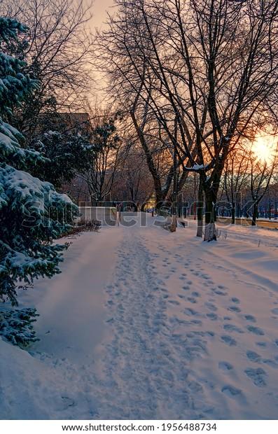 sunset-on-deserted-snowy-street-600w-195