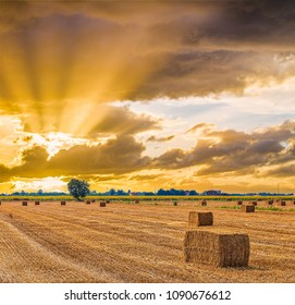 sunset on hay bales drying in Italian country fields - Shutterstock ID 1090676612