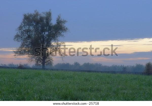Sunset on a horsefarm in kentucky.
