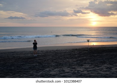 Sunset on the island of Bali. Silhouette of man, dog. Rake.