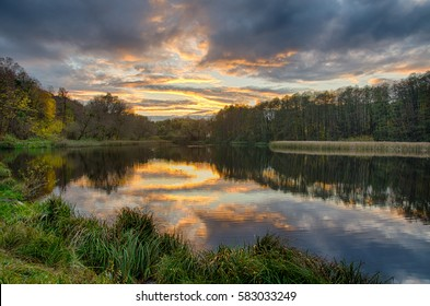 Sunset on the lake with forest with green grass in summer