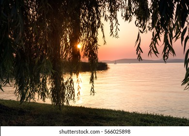 Sunset on the lake through the branches of willow