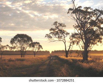 Sunset on lonely rural road facing West, Sandy Camp Queensland outback Australia