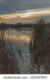 Sunset on the marshland of Purgatory Creek