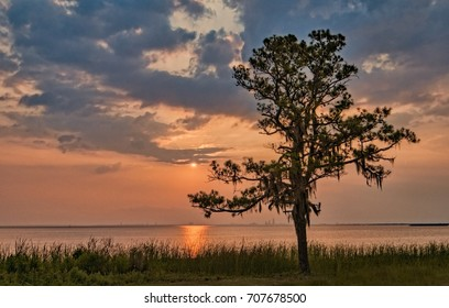 Sunset on Mobile bay with silhouette of trees and shoreline.