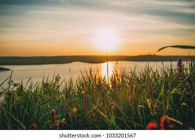 sunset on the sea with grass and lilac flowers and hills