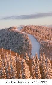 Sunset on ski slopes at winter, Steamboat ski resort, Colorado, United States